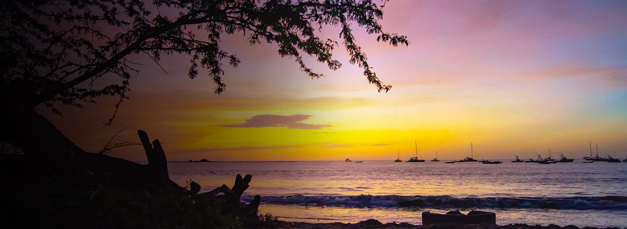 Disfrutá la Feria Turística de Tamarindo