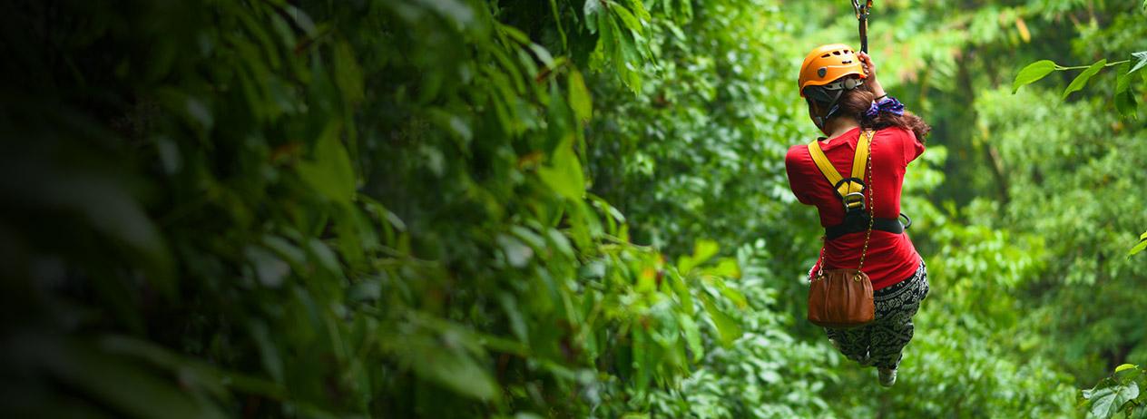 Canopy Parque San Luis con Viajes BAC Credomatic