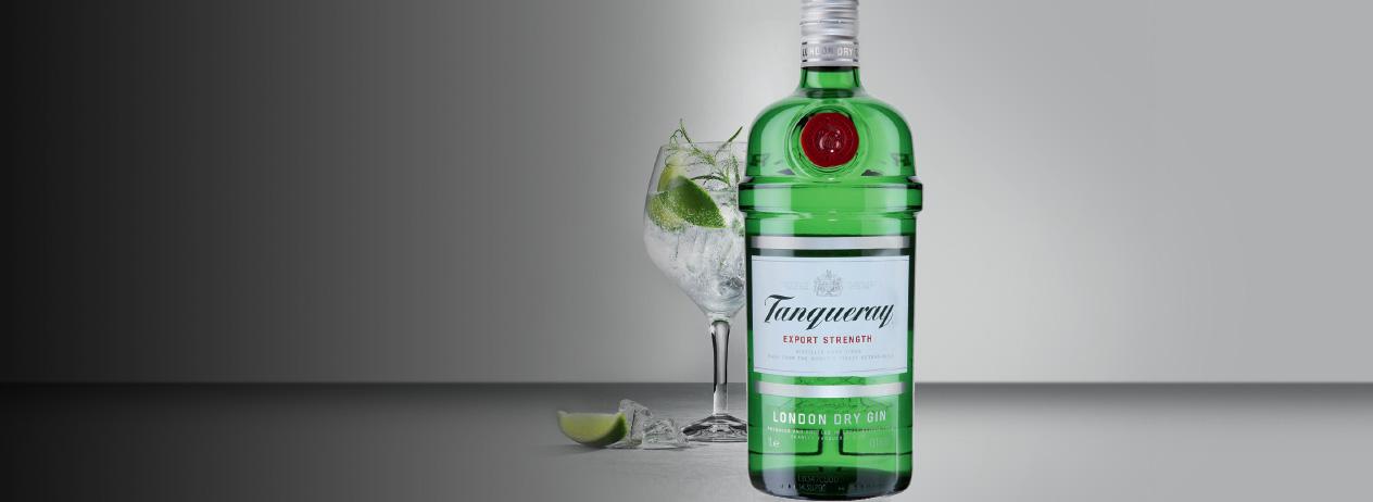 Gin Tonic Tanqueray en El Novillo Alegre